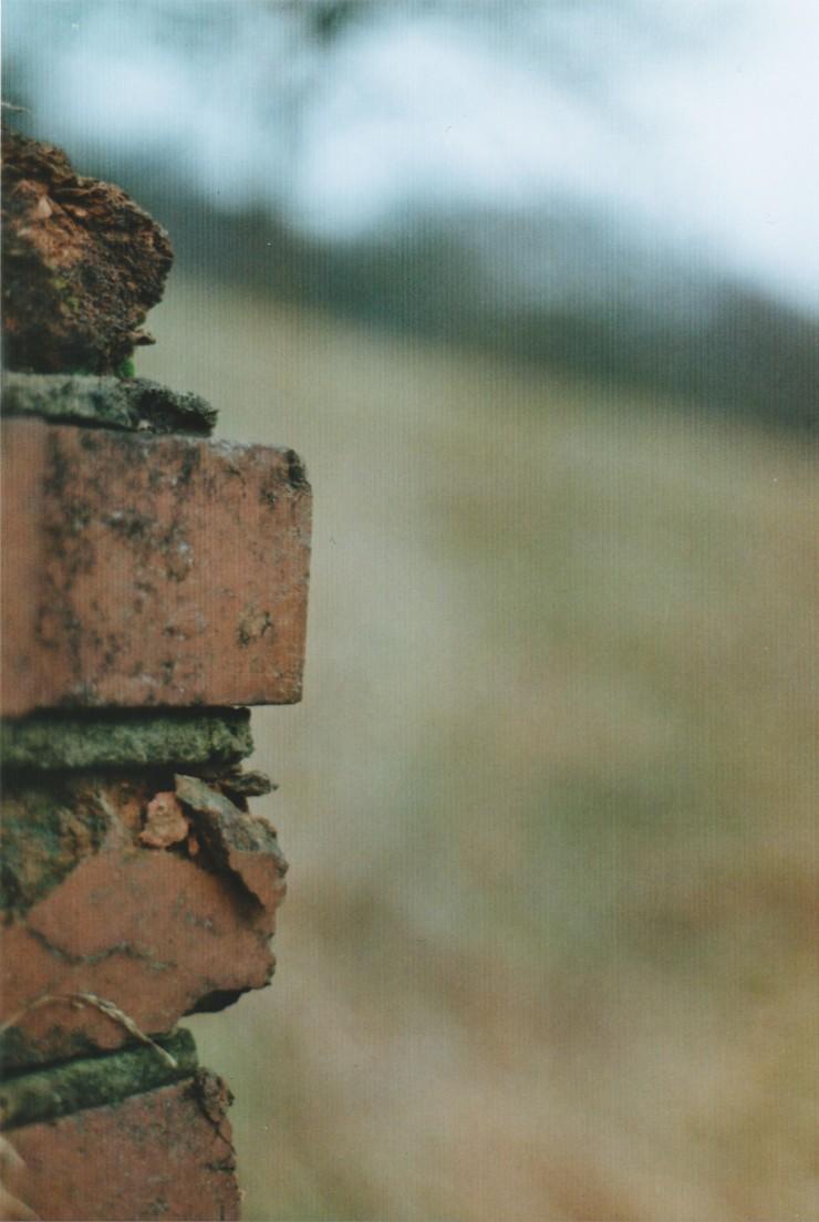 Edit 11 Bricks